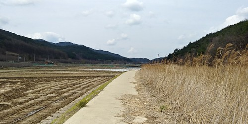 논둑길로 시작, 양수바지, 수안..승무산 산책길