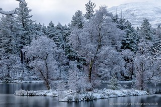 Glencoe Lochan Frozen Little Island-2614 | by Splendid What