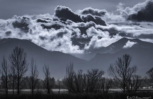 clouds treesihouettes backlighting foothillsoftherockies bouldercolorado