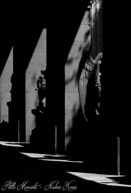 Angel Wings between Light and Shadow....