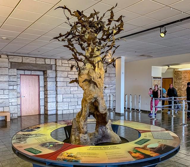 Carlsbad Caverns National Park:  The Bat Flight Sculpture in the Visitor Center