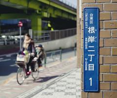 Tokyo 4519