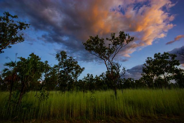 Dusk, Kakadu Highway, Northern Territory, Australia
