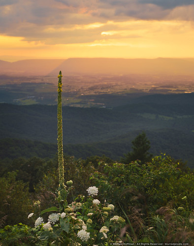 Shenandoah Valley | by mhoffman1