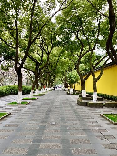 hongmei park china changzhou fall