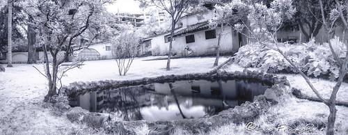 reflejosinfrarrojosinfraredreflects infrarrojo infrarred reflects reflejos infraredview ngw ngs ngd ngg ng ngc ngo luisfrancor