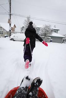 20190209 snowzilla-9 | by schnell foto
