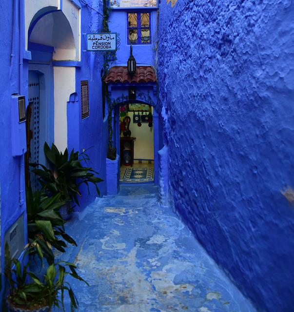 Chefchaouen, Morocco, January 2019 D810 658
