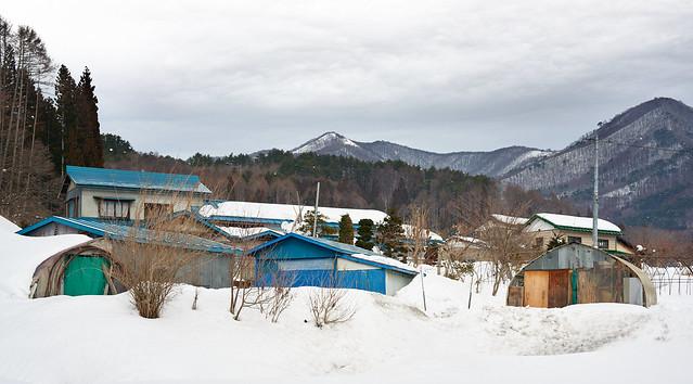 Japan winter - 2