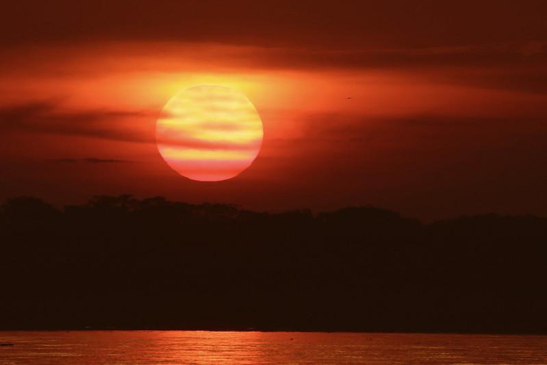 Sunset in the Amazon Ascanio_David Ascanio 199A8555