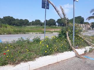parcheggio san francesco (4)
