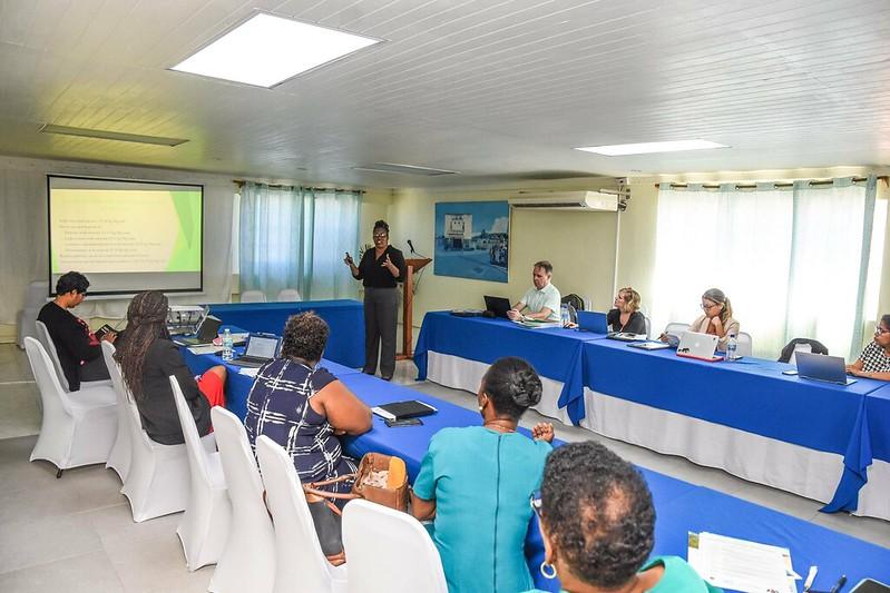 Dominica Validation Workshop