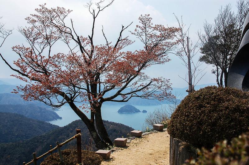 梅丈岳山頂公園 1