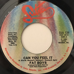 FAT BOYS:CAN YOU FEEL IT(LABEL SIDE-A)