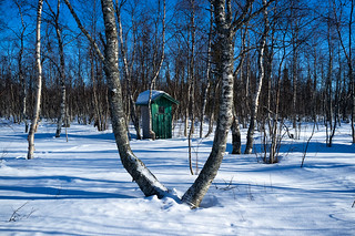 Green outside loo | by Winterbound