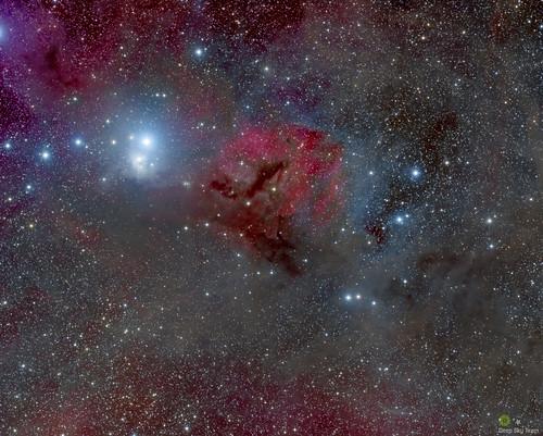 IC348 | by Lizarranet