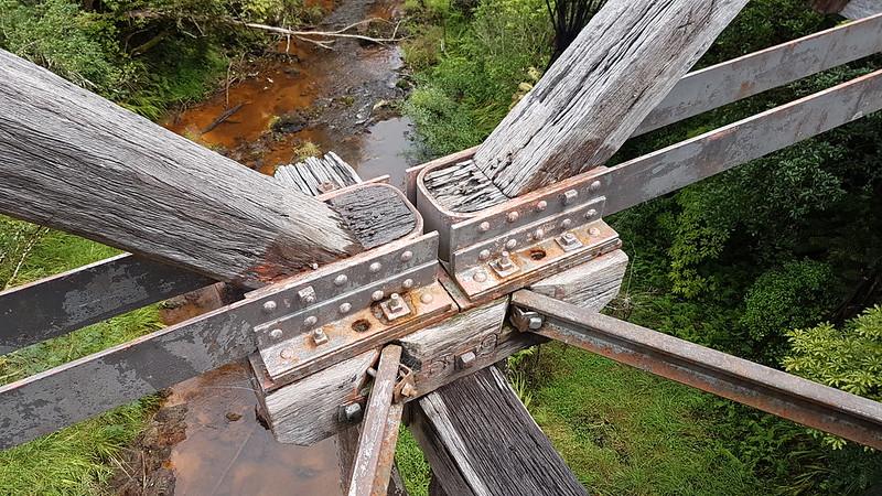 Twin Coast Trail
