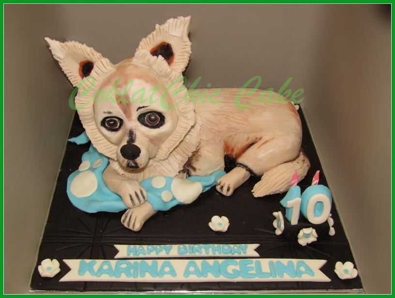 Cake Doggy KARINA 15 cm