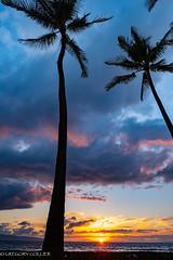maui sunset-9.jpg