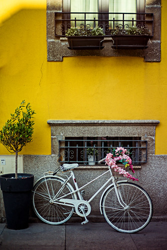 The Enticing Bicycle   by Adam Bonn