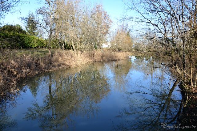 Bleu d'hiver dans les étangs