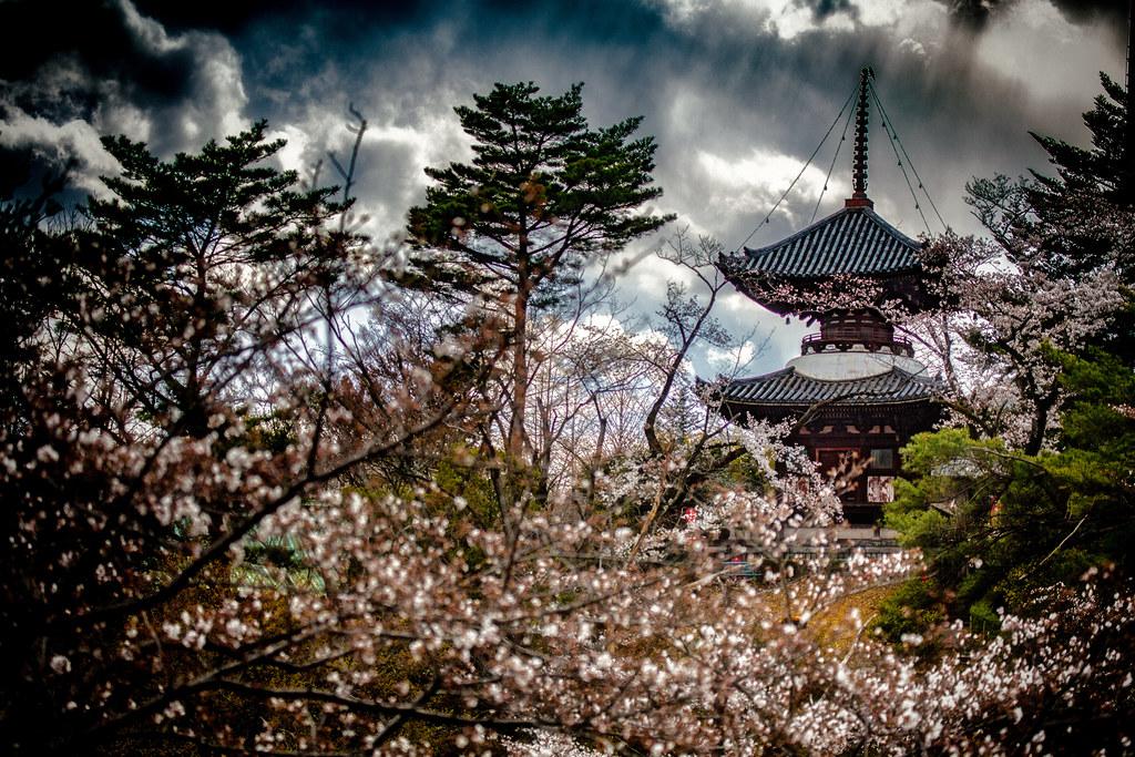 Sayamasanfudoji Temple, Tokorozawa, Japan