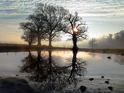 gordonedgar studl eyroyal park fountainsabbey ripon northyorkshire mist pond winter sunrise