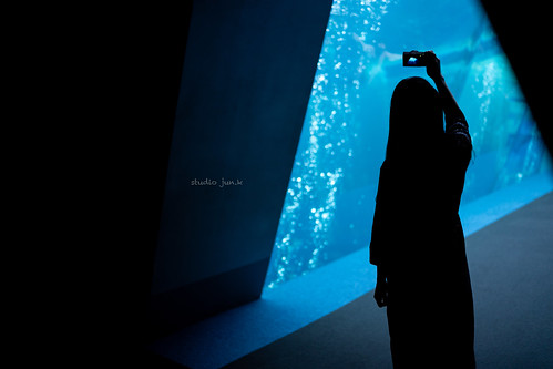 Untitled | by jun.kuroita