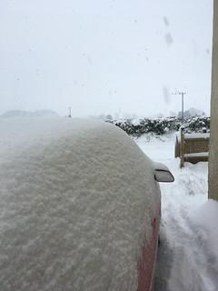 Snow - 1st-3rd Feb 2019 | by T_Marjorie