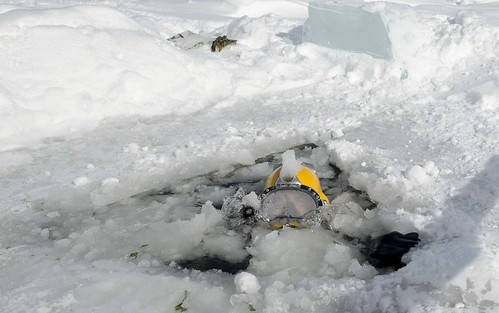 A Diver surfaces during diving training on a frozen lake. | by Official U.S. Navy Imagery