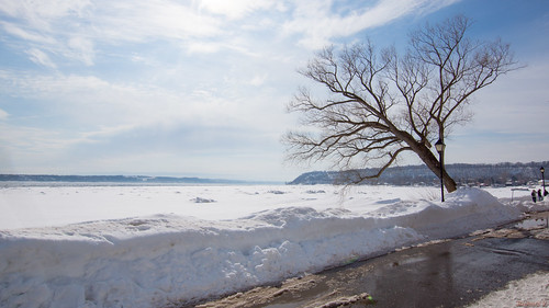 parcdelaplagejacquescartier québec canada 9734 fleuvesaintlaurentenhiver river winter