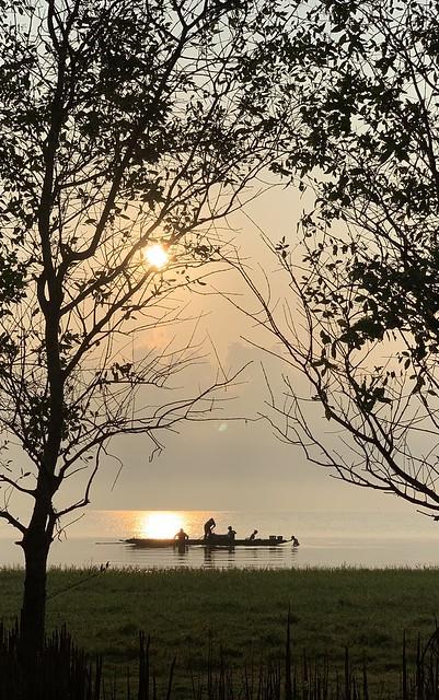 Good morning @phatthalung, Thailand.