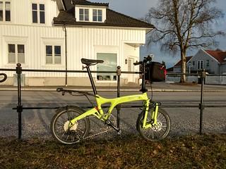 Birdy in Porsgrunn | by gunnsteinlye