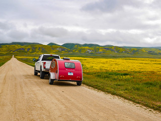 Carrizo Plain superbloom | by snackronym
