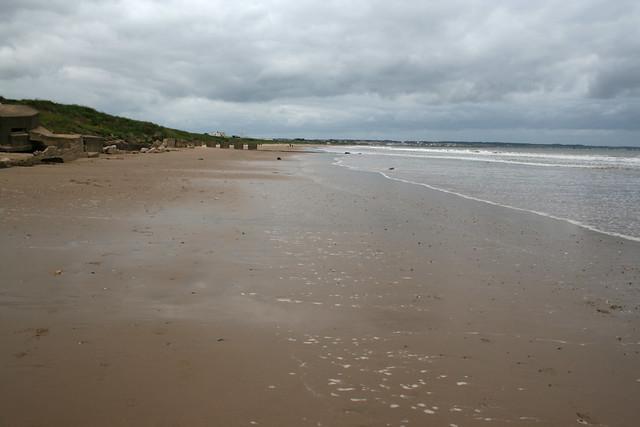 The coast near Auburn