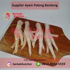 Harga Ayam Potong Per Kilo, Tlp/Wa. 0812-8044-5559, Berkah Butcher