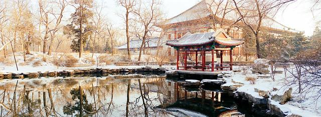 北京大学-鸣鹤园(Minghe Garden, Peking University)