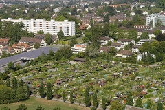 Familiengarten Areal