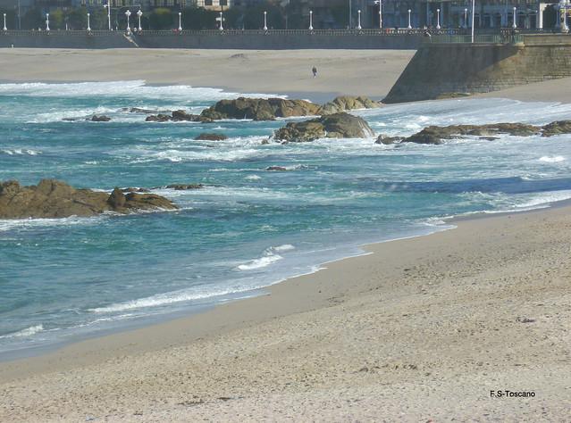 Solitario, en la playa. Lonely, in the beach.