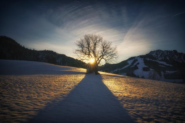 Good Morning Tirol!
