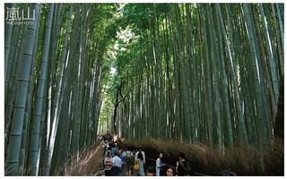 嵐山半日遊-23