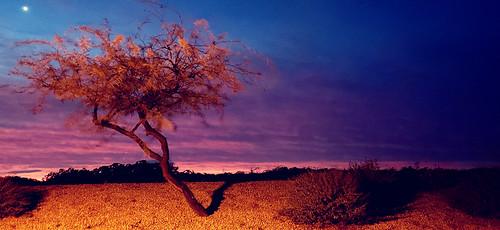 sky arizona sunrise phonepics samsunggalaxy clouds