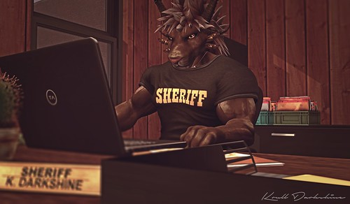 The Desk of Justice   by Krull Darkshine