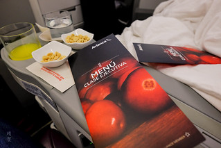 Menu for the flight | by A. Wee