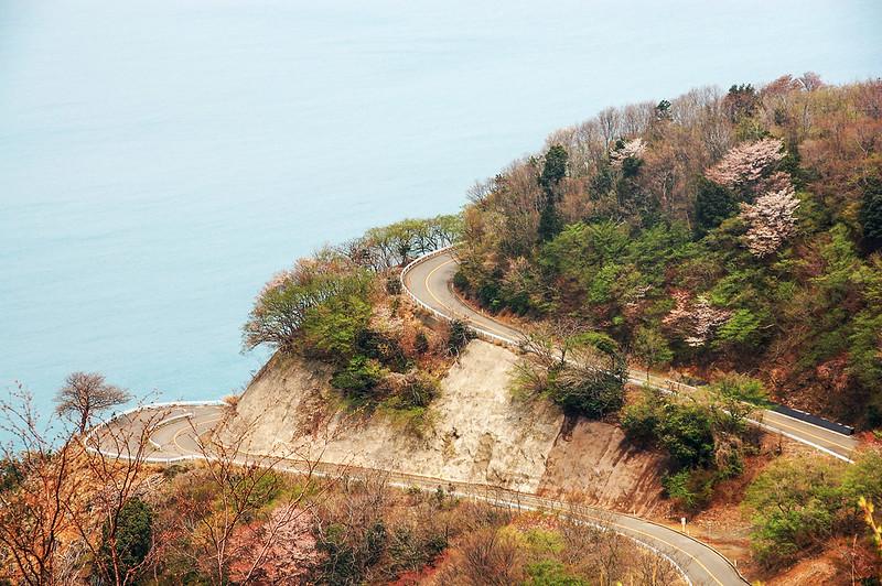 登山頂公園的彩虹道路 2