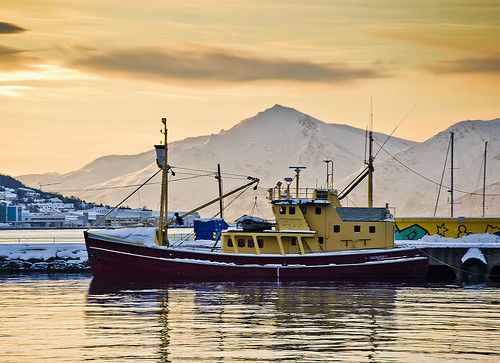 noruega norway norge troms tromso tromsø artic hivern winter neu nieve snow schnee fred frio cold romsa port puerto harbour vaixell boat ship groc yellow muntanya montaña mountain sunrise calm quiet moored