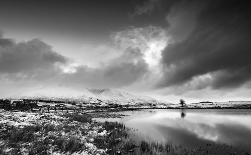 Tewet cold morning mono | by Alf Branch