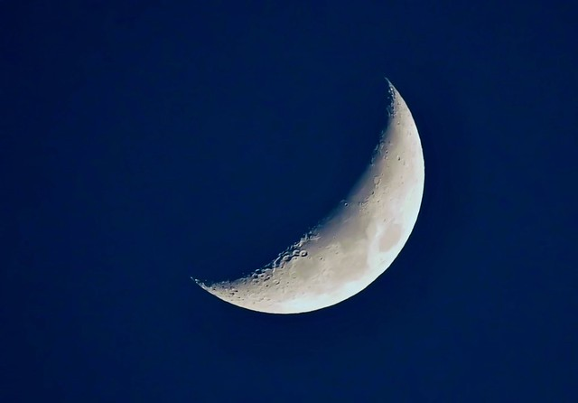Moon Over Bosque del Apache