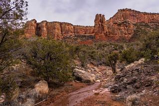 Side Canyon Scene | by IntrepidXJ