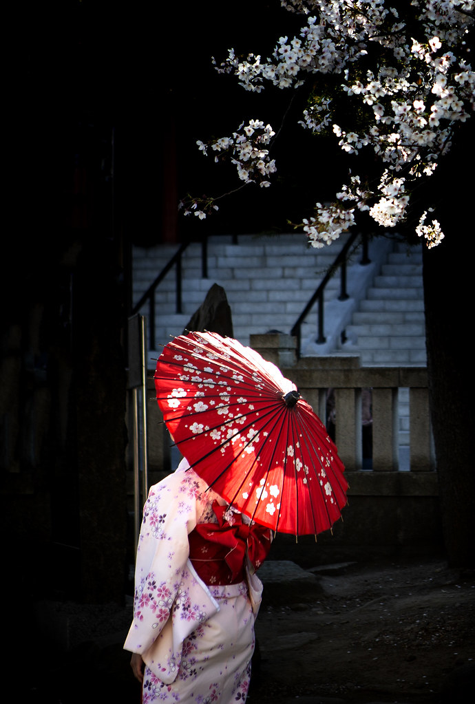 A Japanese Woman In Yukata, During The Cherry Blossom Season